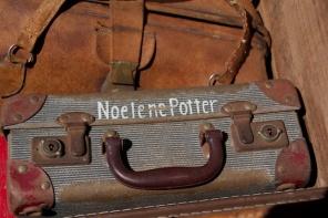 noelene's port