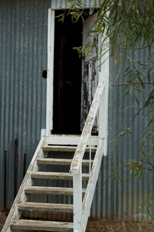 into the woolshed