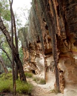 sandstone caves Pilliga Forest 1