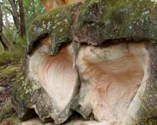 sandstone caves Pilliga Forest 3