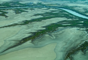 Wyndham King River Estuary Detail