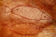 Wandjina art fish