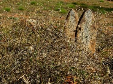 Afghan Cemetery Broome