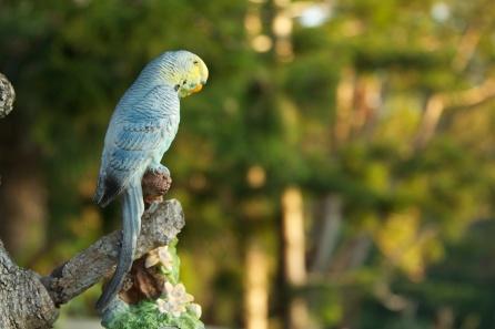 a not so real bird in the garden