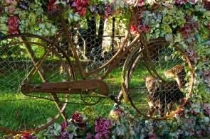Dan's gate & kelpies