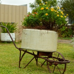 Bourke tub and barrow