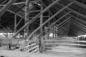 shearing shed Mungo NP