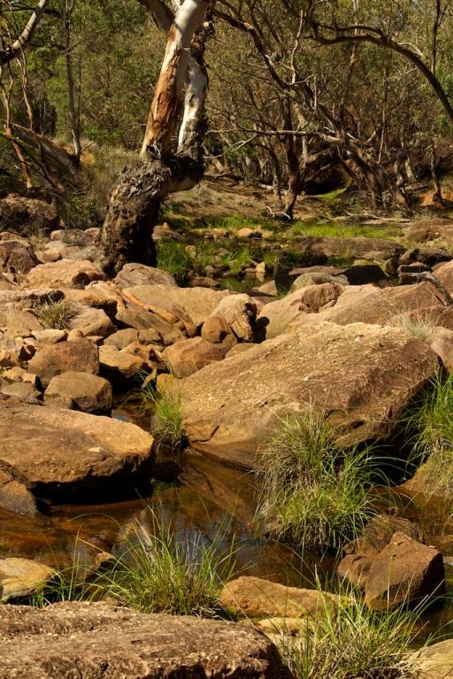 rocky creek Gundabooka NP