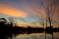 Warrawong sunset