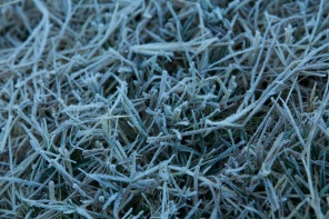 millions of bits of frost