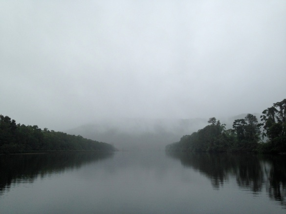 Daintree River and early morning misty rain