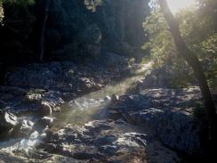 Broken River Eungella NP