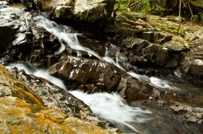 falls in the Paluma forests