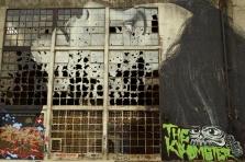 Geelong Powerhouse back