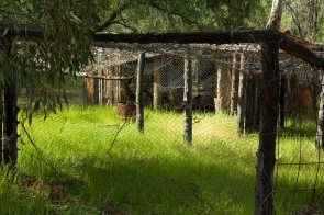 chook house Seaton's Farm