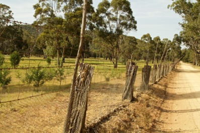 fences at Seaton's Farm