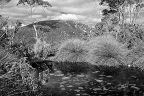 Cradle Mountain NP